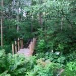 The bridge from Bushy to Bracken Cottage