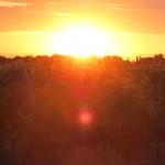 Sunset at Hunter Farms