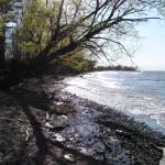 ...to the beach at Niagara Shores Park
